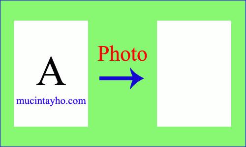 Máy in HP M1212 photo ra tờ giấy trắng